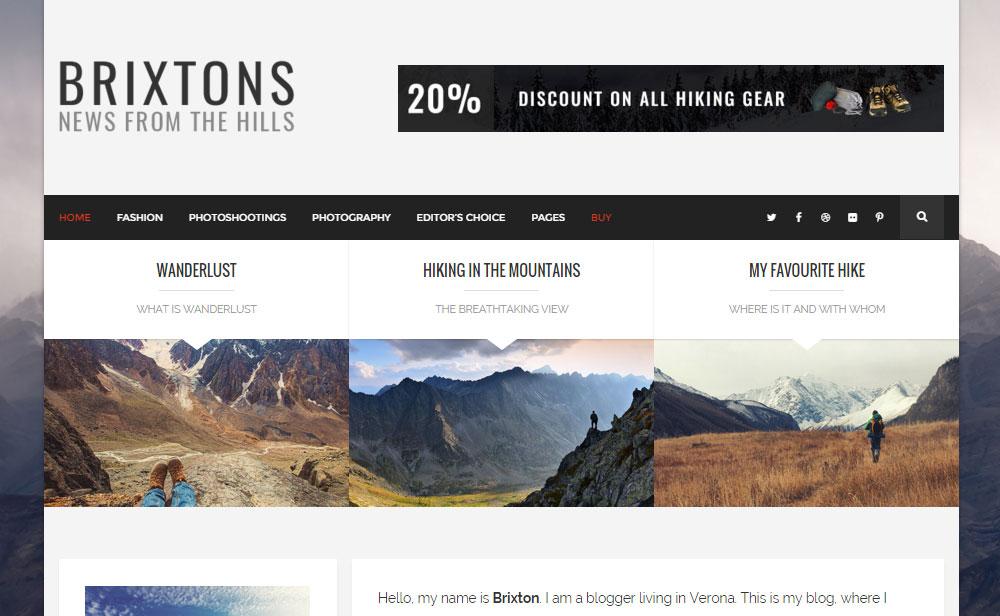 Brixton WordPress Theme Review Homepage