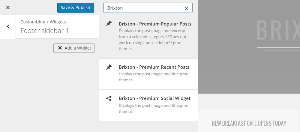 Brixton WordPress Theme Review Widgets