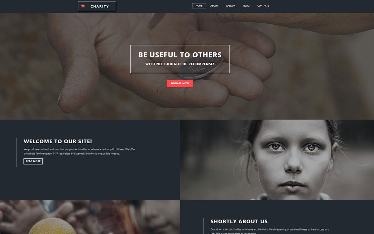 Charity Website Template image
