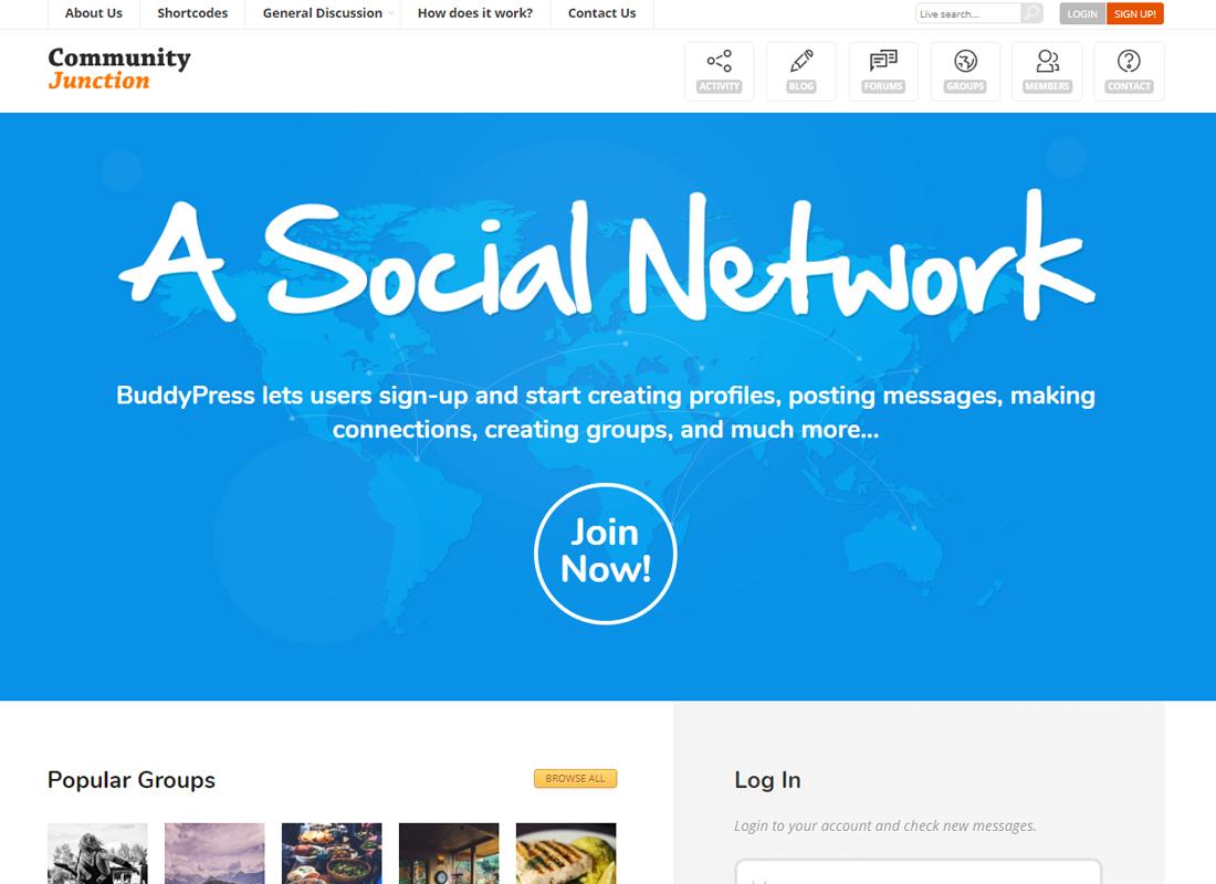 CommunityJunction   BuddyPress Theme