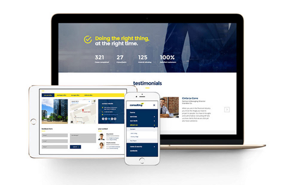Consulting WordPress Theme Review - Responsive