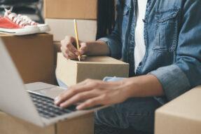 Drop Shipping WordPress Themes