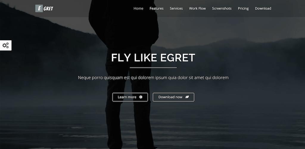 Egret HTML5 landing page