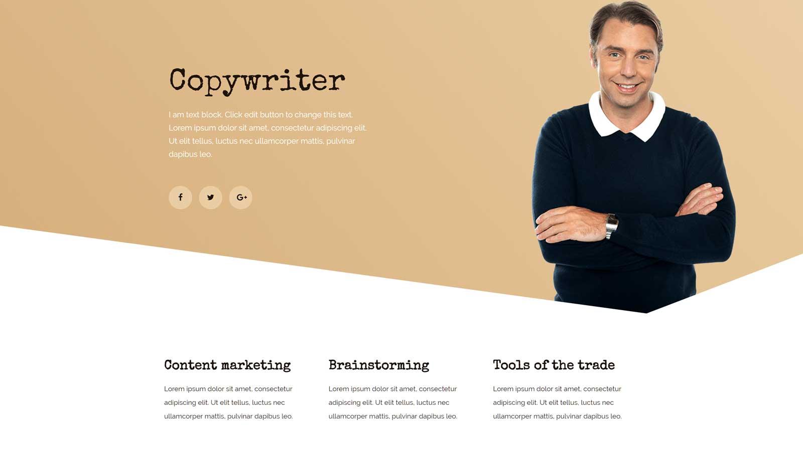 Plantilla de sitio web de redactor