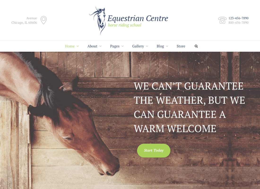 Equestrian Centre | Horse-riding School WordPress Theme
