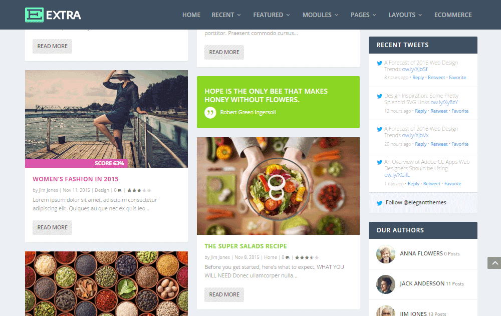 Extra WordPress Theme Review Blog Layout