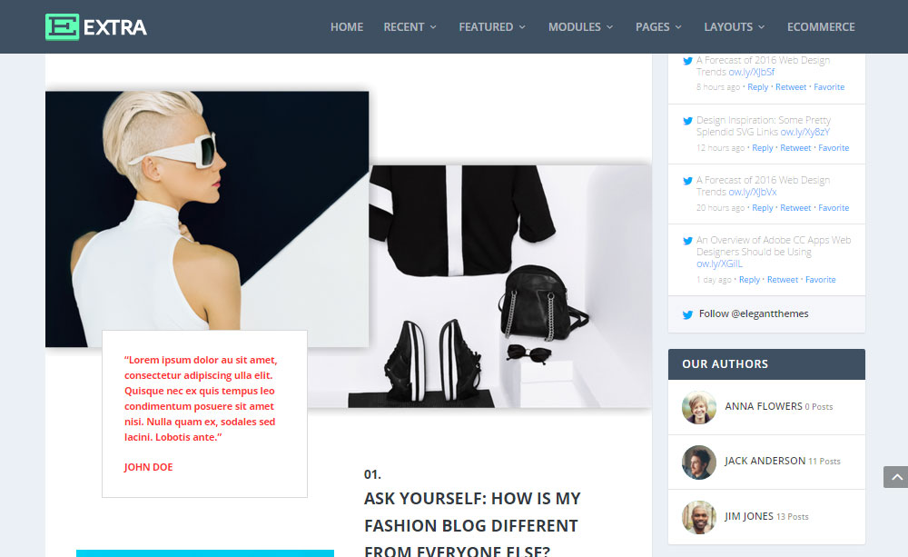 Extra WordPress Theme Review Blog Post
