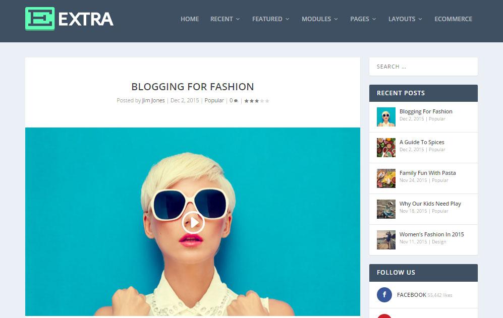 Extra WordPress Theme Review Blog