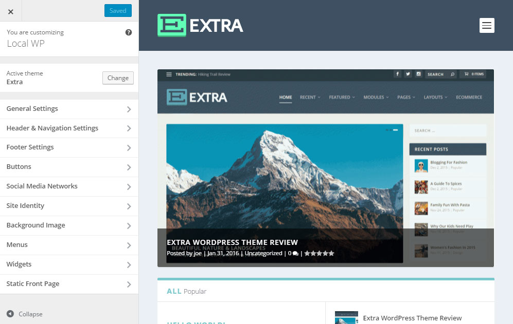 Extra WordPress Theme Review Customizer
