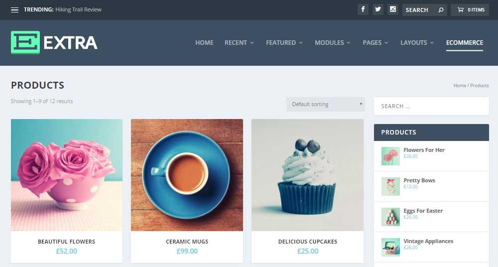 Extra WordPress Theme Review E-Commerce