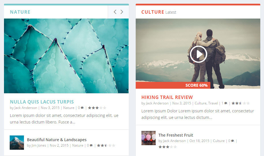 Extra WordPress Theme Review Homepage Reviews