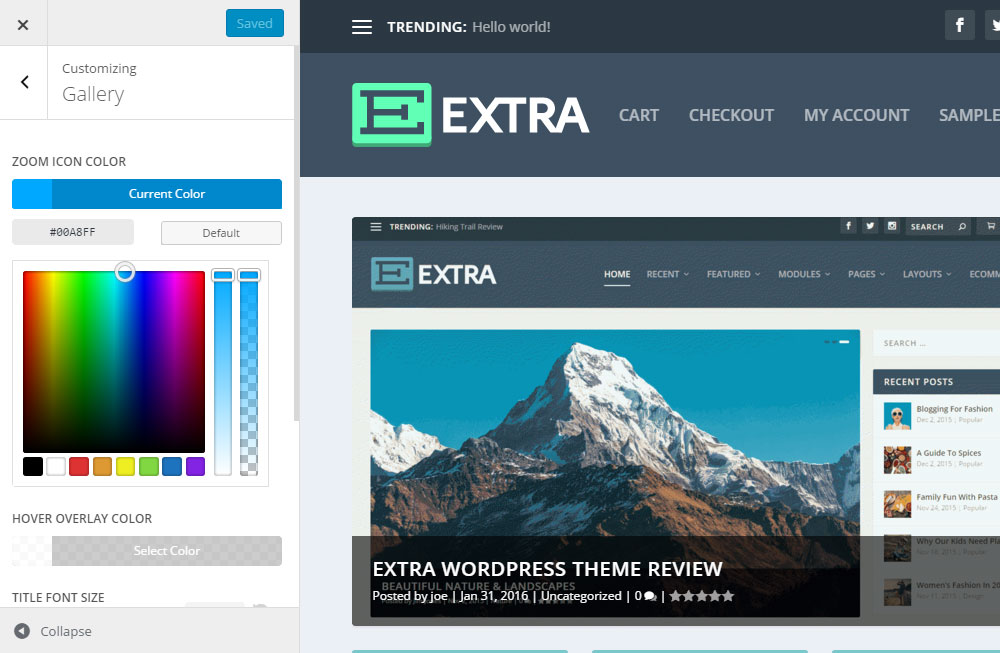 Extra WordPress Theme Review Modules