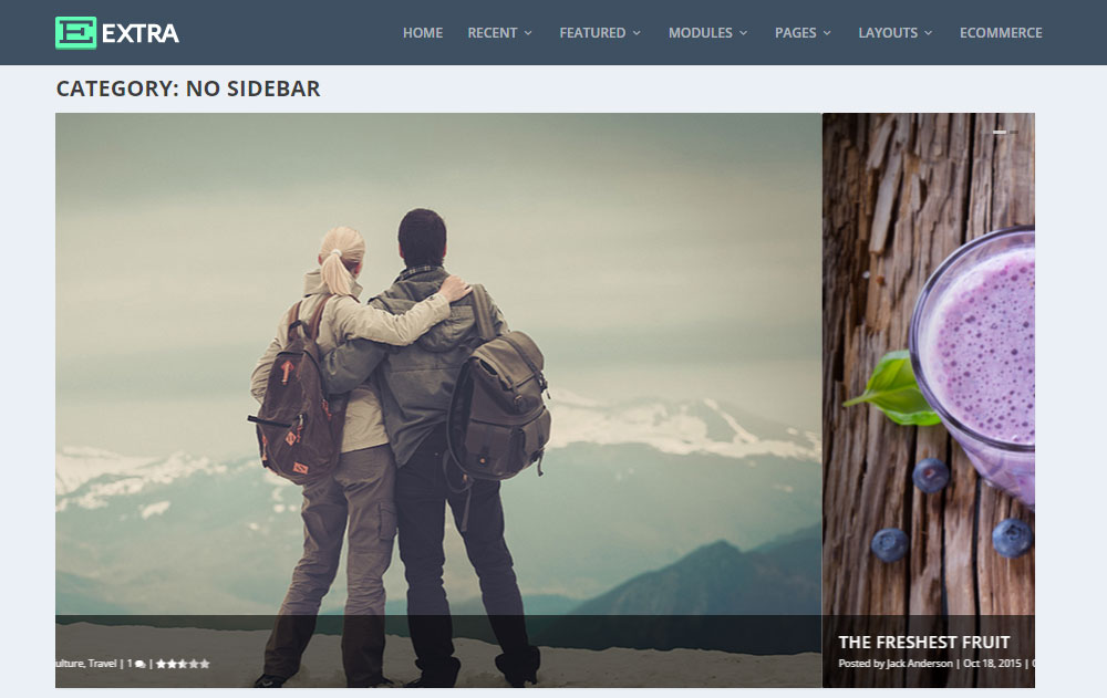 Extra WordPress Theme Review No Sidebar