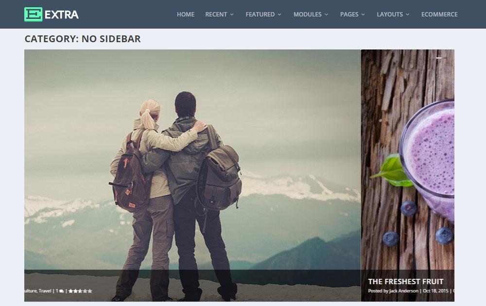 Extra WordPress Theme Review No Sidebar
