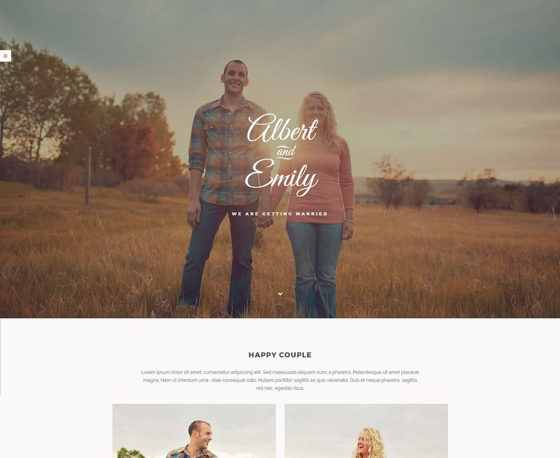 Wedding website for married couples