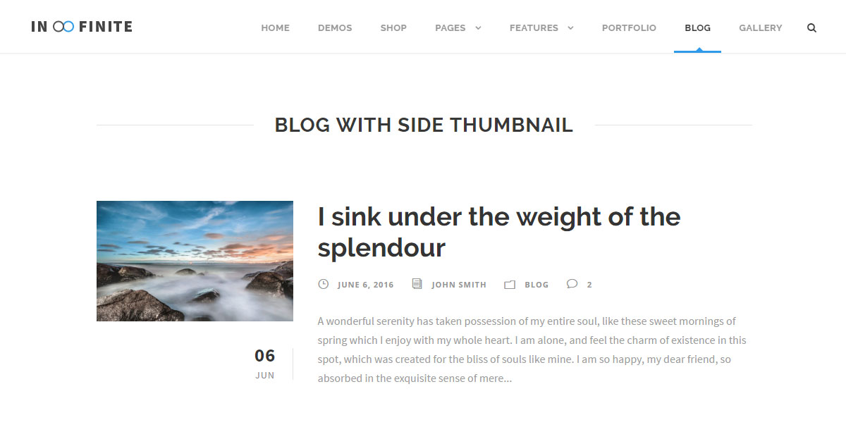 Infinite Theme Review Blog