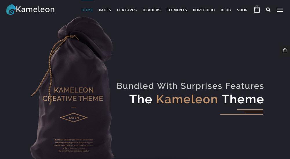 Kameleon Portfolio Design