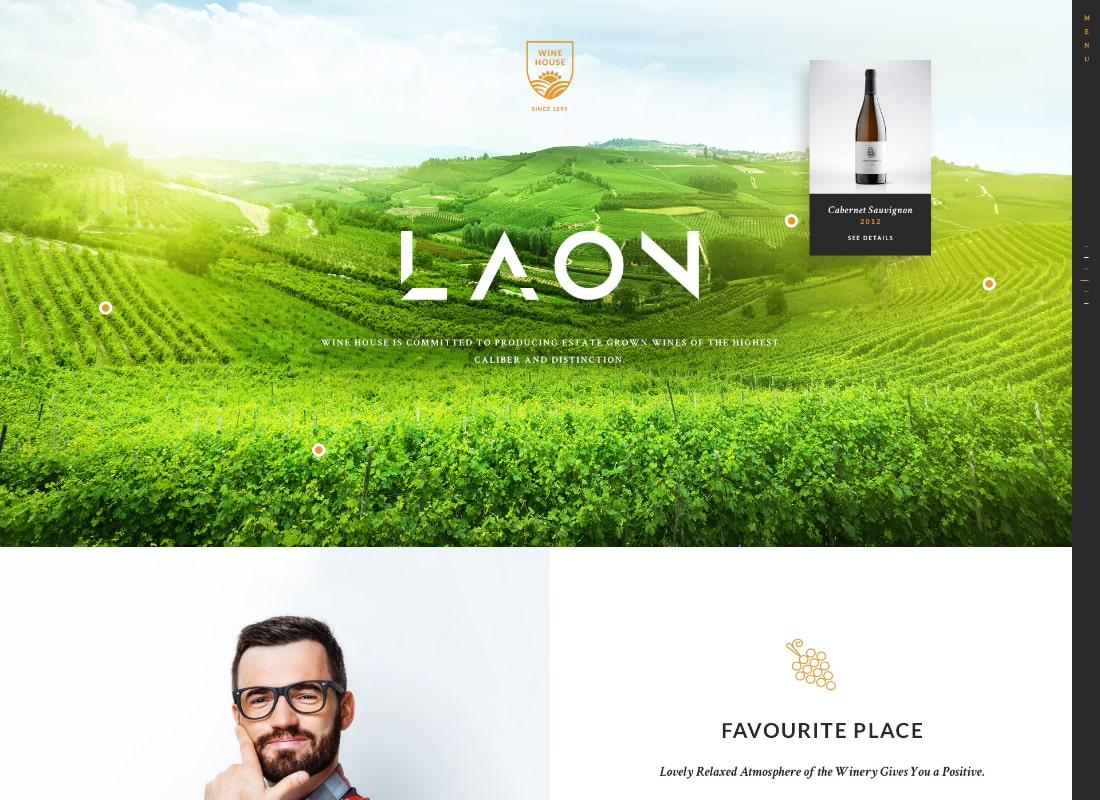 Laon | Wine House, Vineyard & Liquor WordPress Theme + Shop