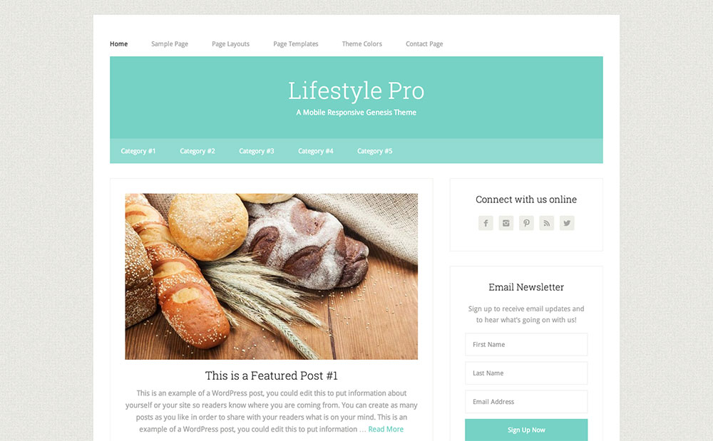 Lifestyle blog theme