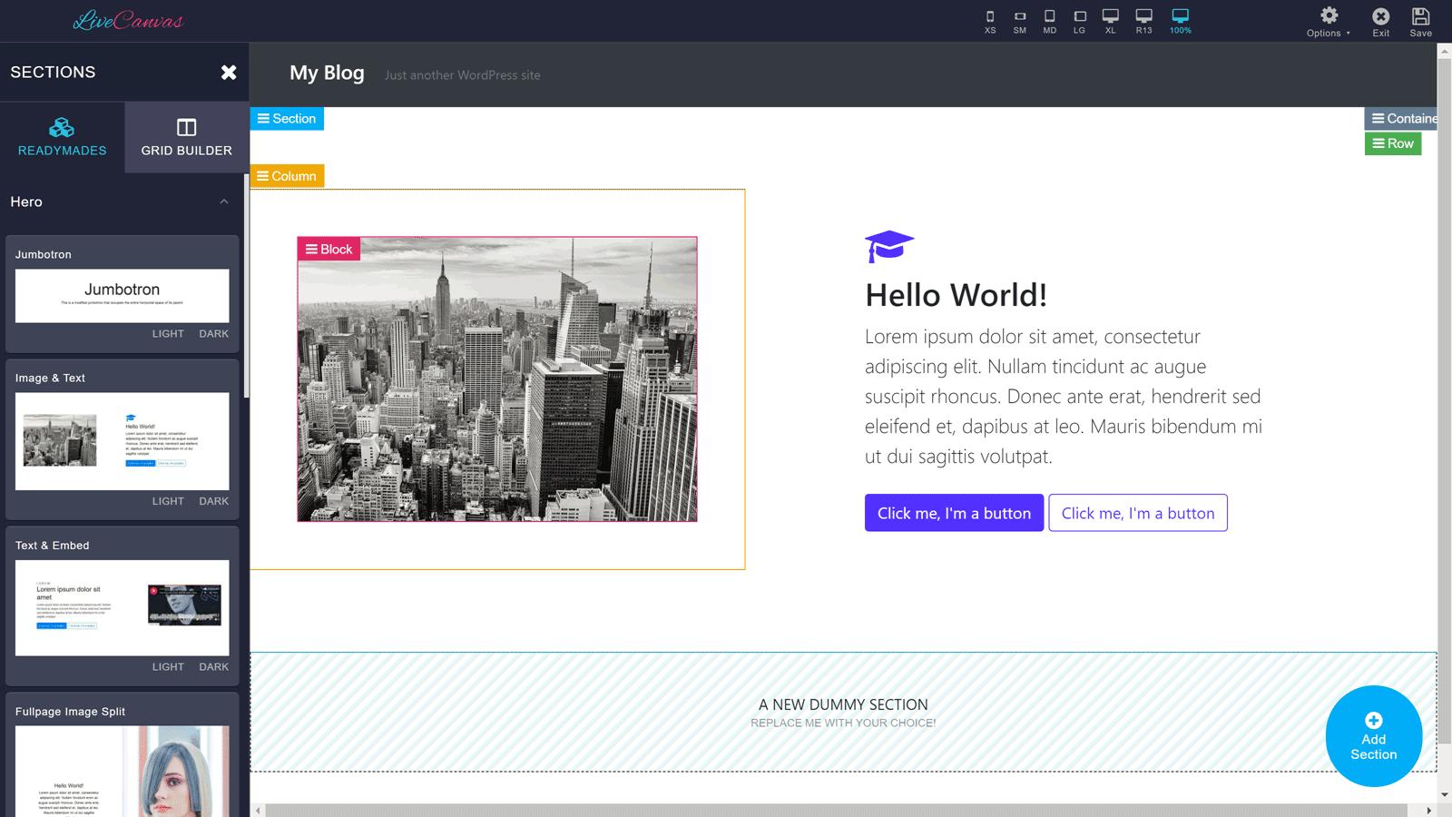 LiveCanvas New Section