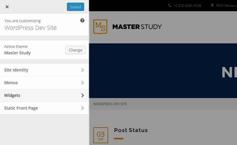 Masterstudy WordPress Customizer