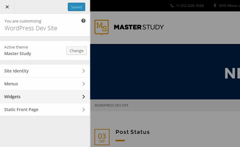 Masterstudy WordPress Customizer