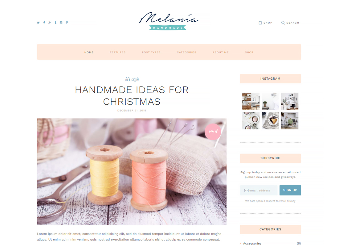 Melania - Handmade Blog & Shop WordPress Theme