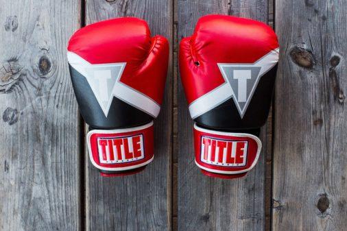 Mixed Martial Arts WordPress Themes
