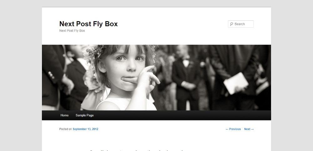 Next Post Fly Box