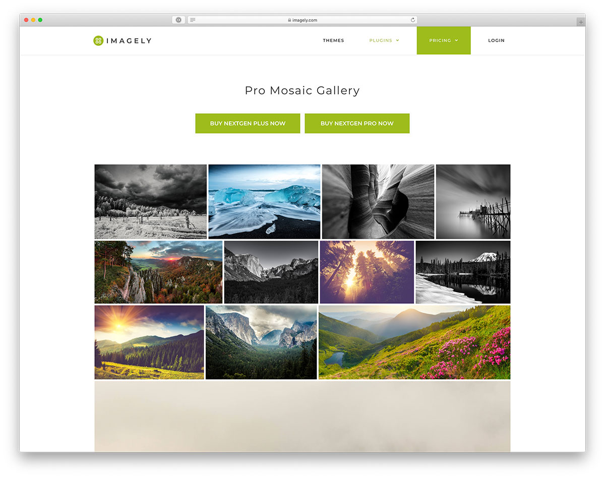 NextGen Gallery - Popular WordPress gallery plugin