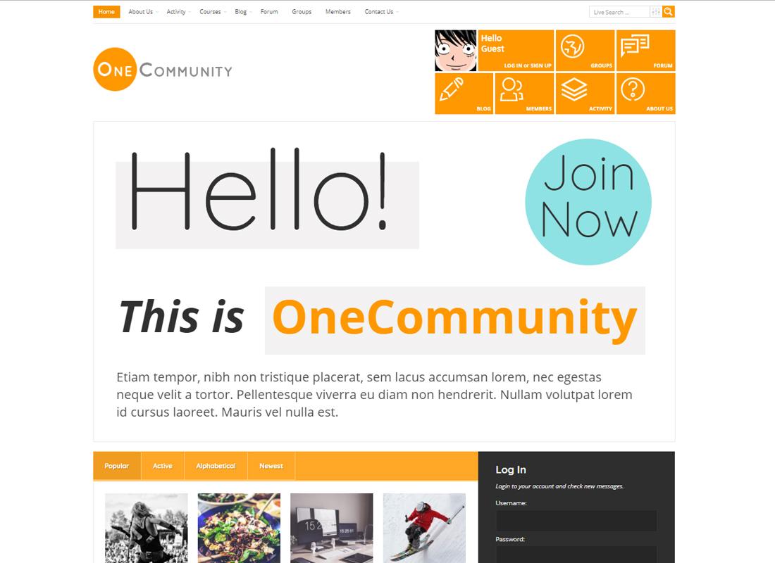 OneCommunity   BuddyPress Community e-Learning LMS Theme