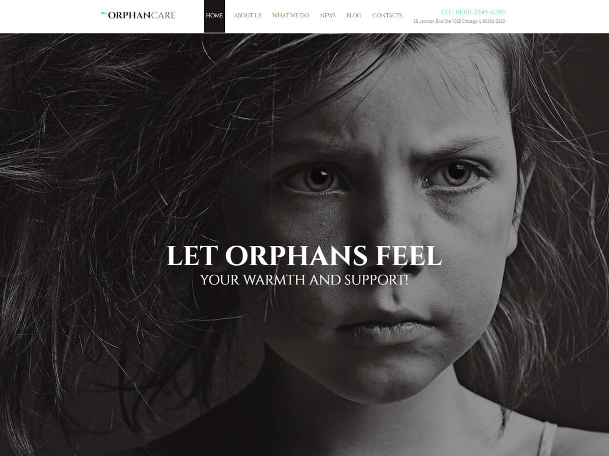 Orphan Care Charity Website Template image