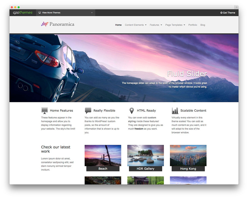 Panoramica WordPress themes