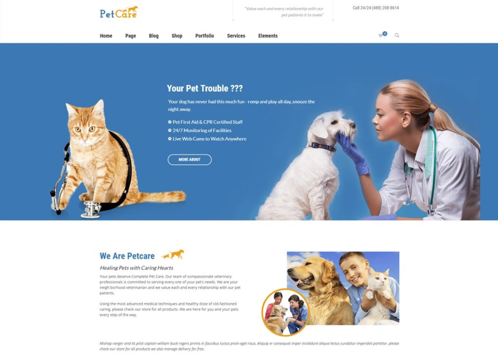 , Best Zoo WordPress Themes to Set up a Great Website for Your Pet Business, Rojak WP