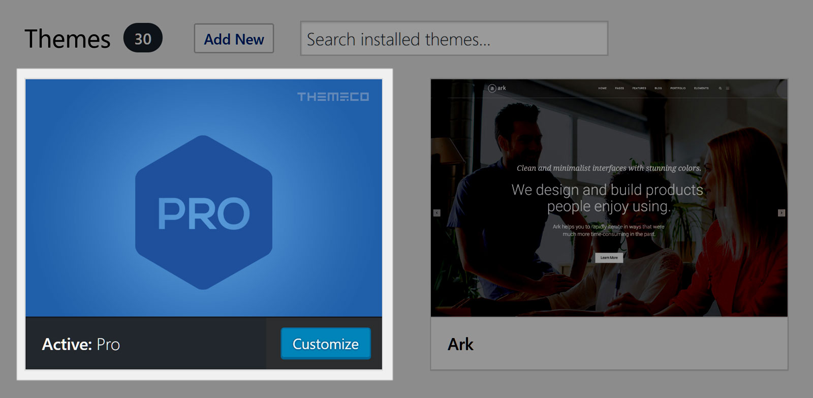 Pro WordPress Theme