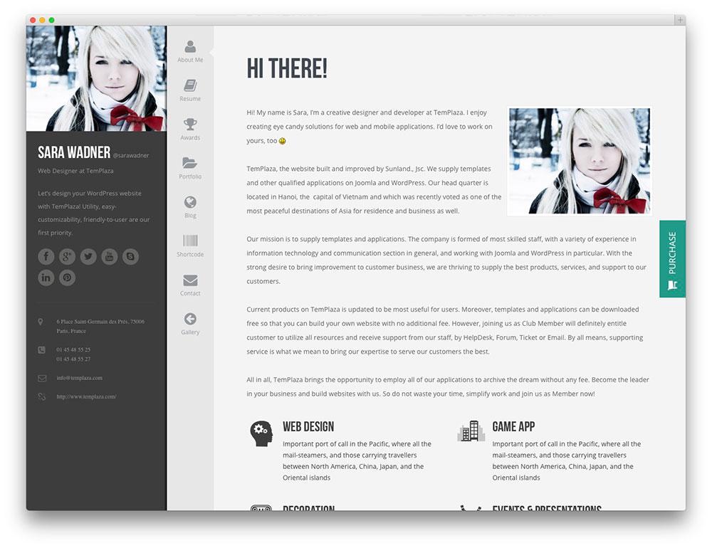 Wordpress Resume Theme 2015. 30 best vcard wordpress themes 2017 ...