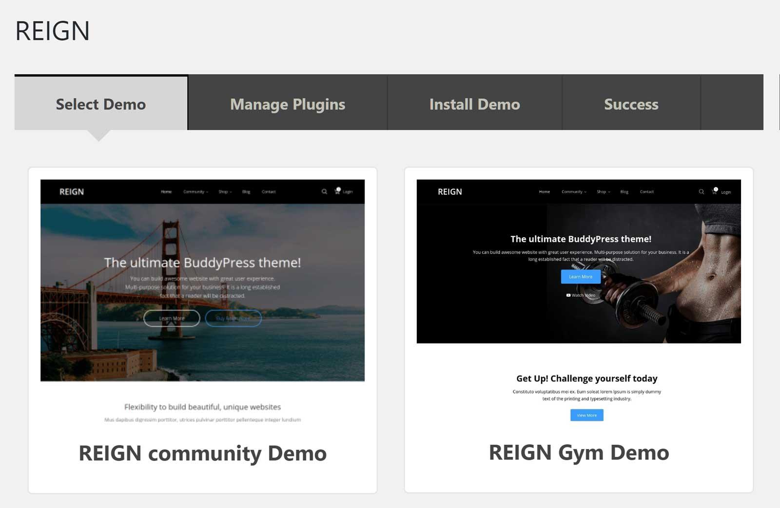 social community WordPress website