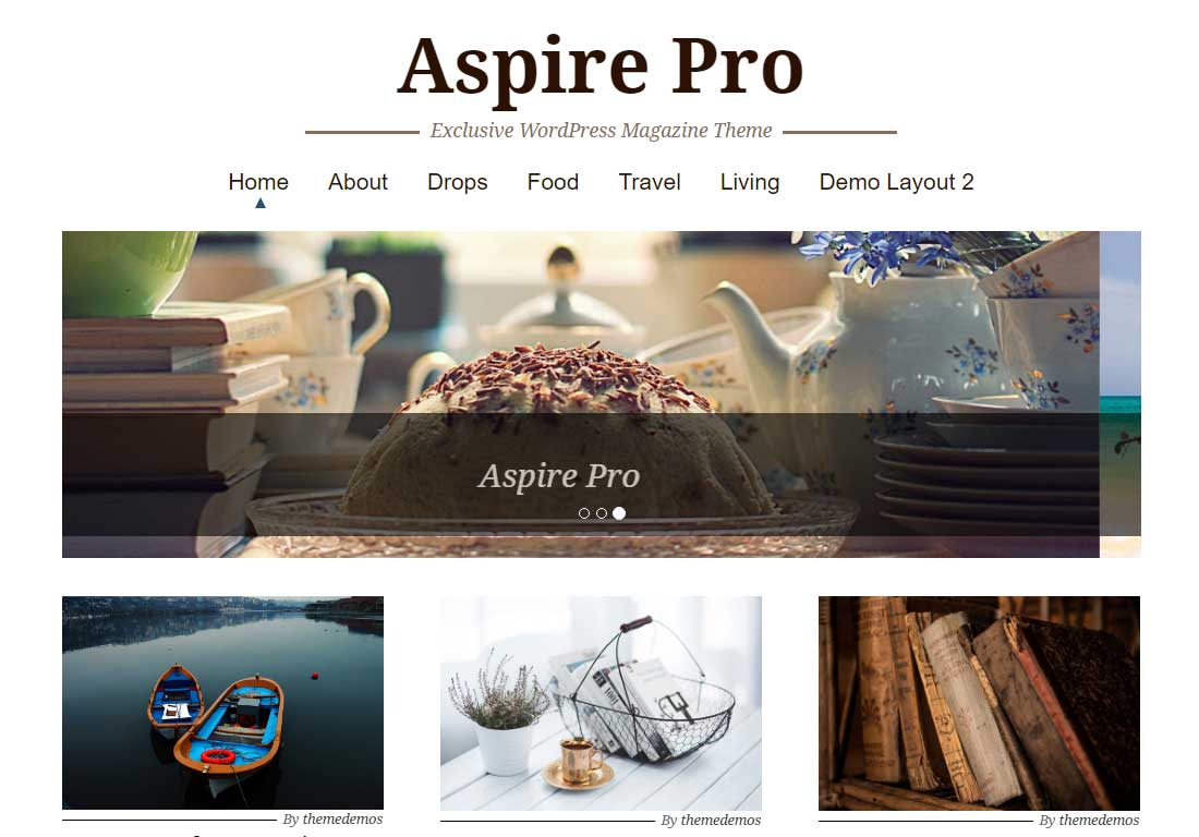 Responsive Pro Review Aspire Pro