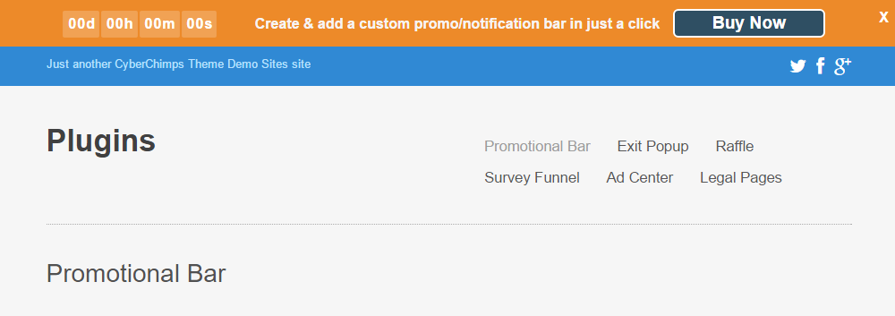 Responsive Pro Review Promo Bar