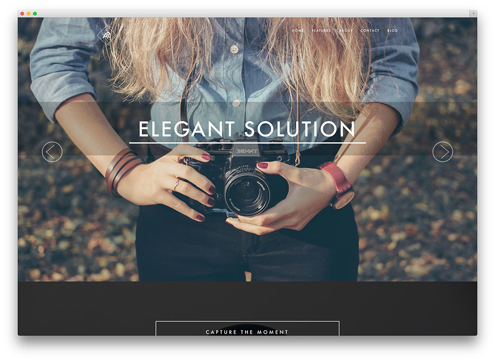 RokoPhoto - photography WordPress theme