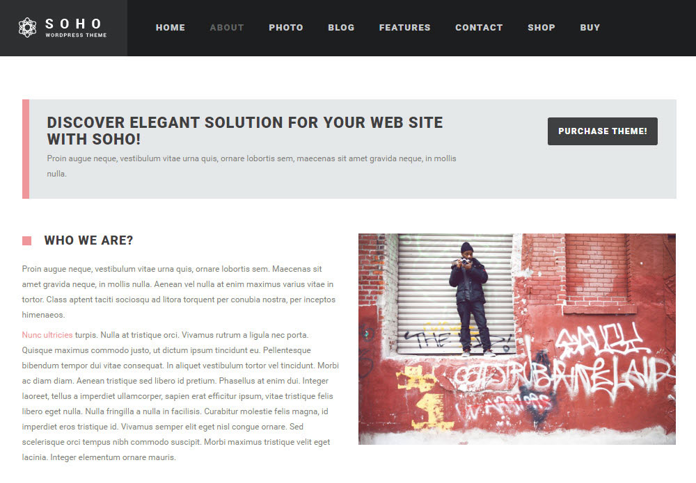 SOHO WordPress Theme Review About Page