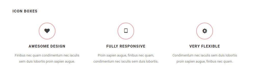 SOHO WordPress Theme Review Icon Boxes