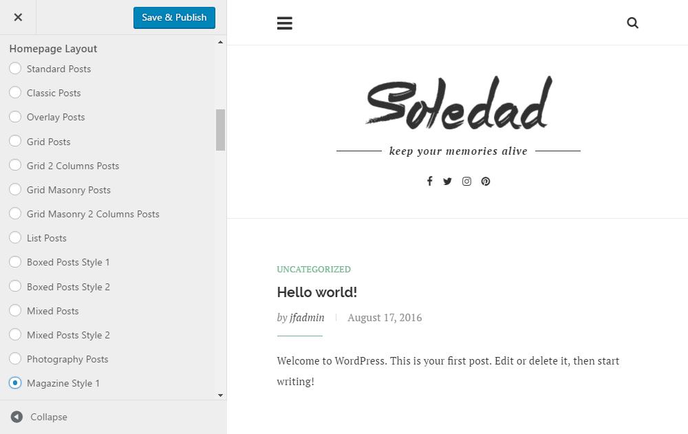 Soledad Theme Review Customizer 02