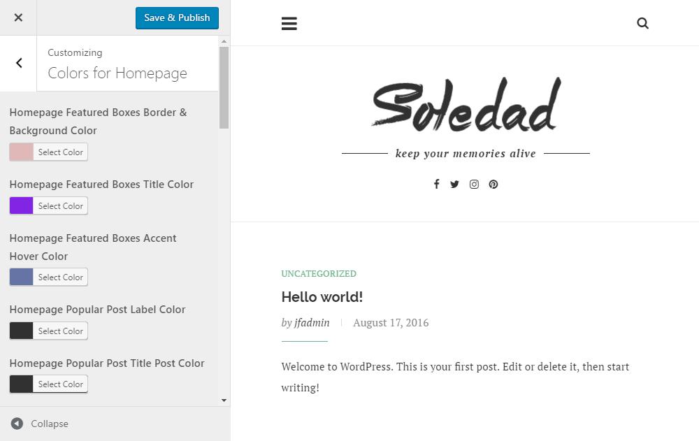 Soledad Theme Review Customizer 03