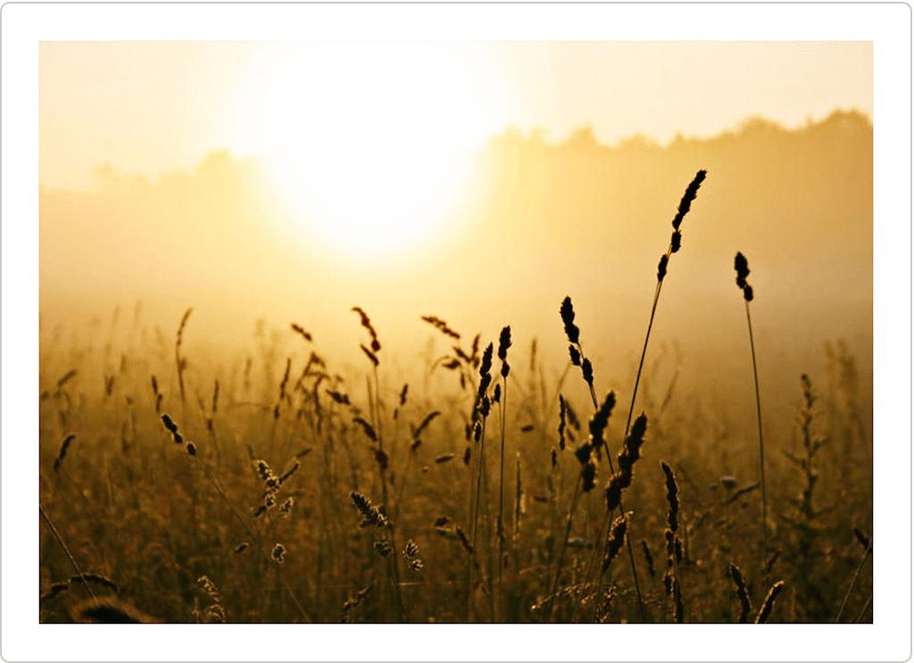 Sunlight Photoshop Actions