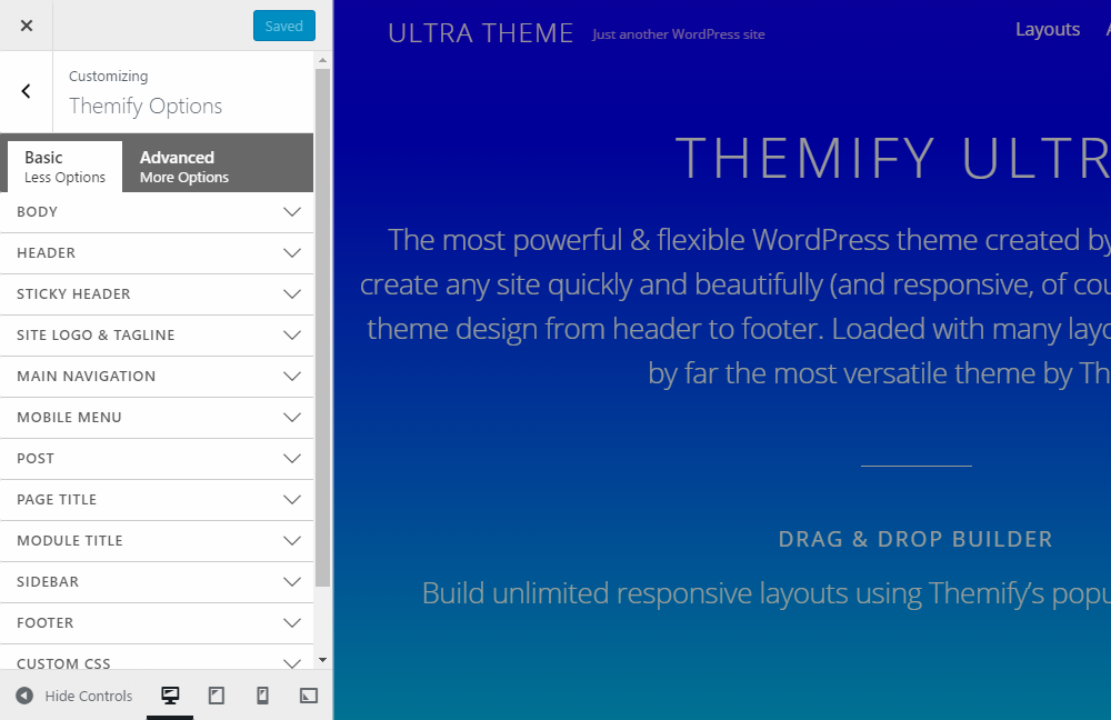 Ultra WordPress Theme Review Customizer
