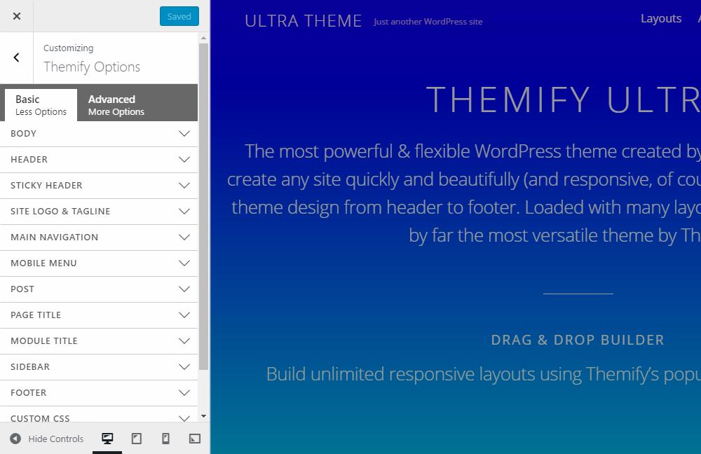Ultra WordPress Theme Review Customizer