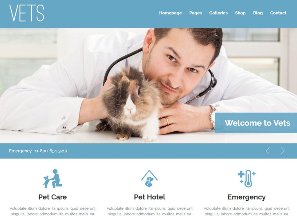 Vétérinaires |  Thème WordPress pour clinique vétérinaire