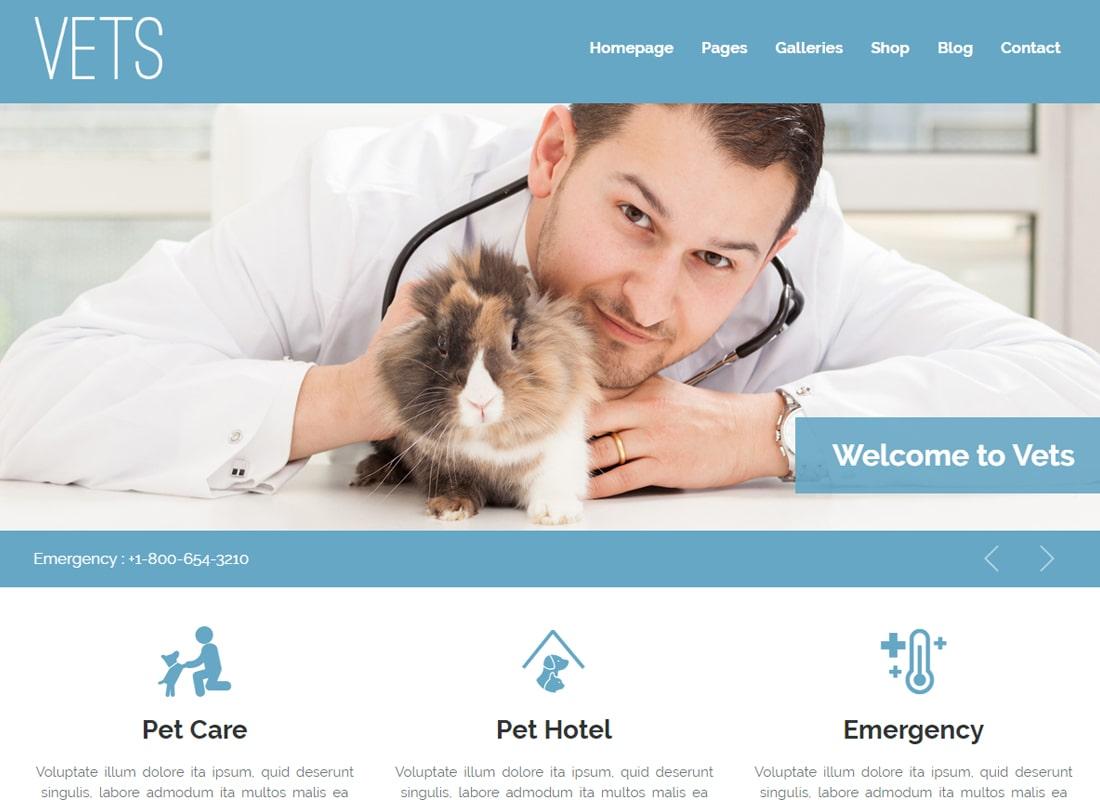 VETS - Veterinary Medical Health Clinic WP Theme