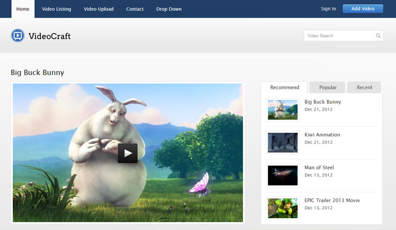 Video Blogging Theme